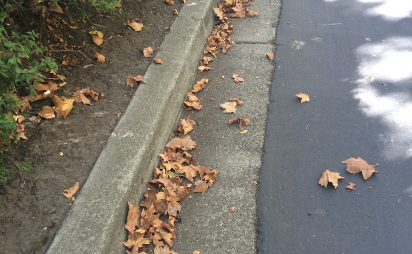 fall in california: part one